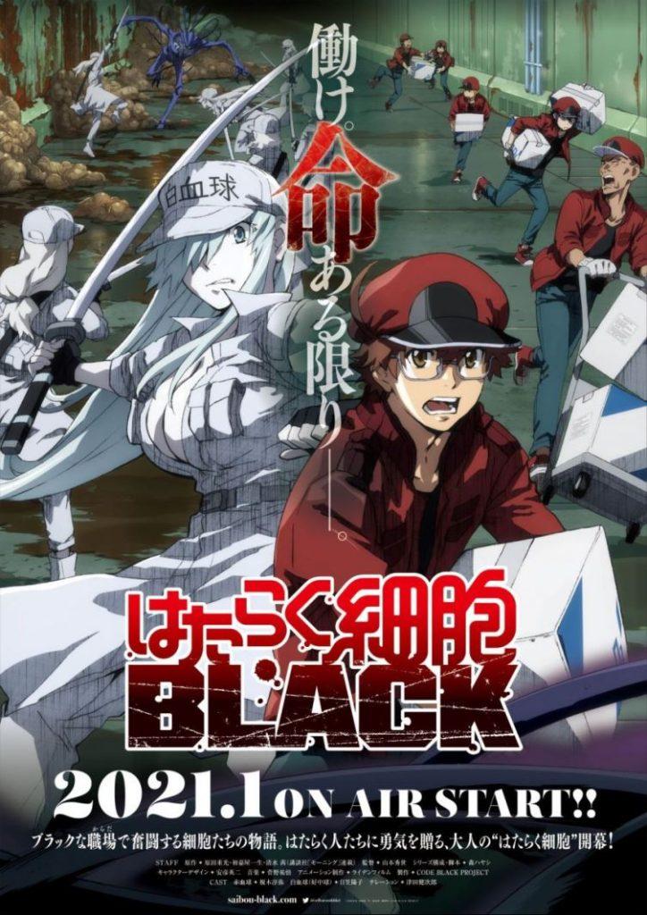 Hataraku Saibou Black anime