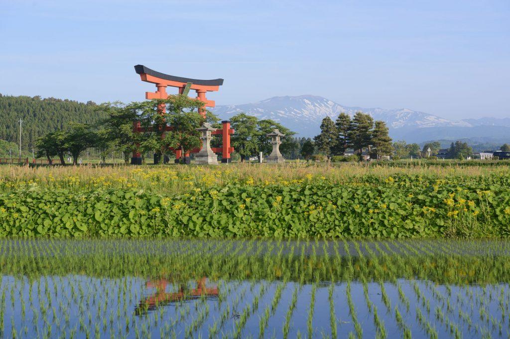 Torii japônes com uma montanha ao fundo.